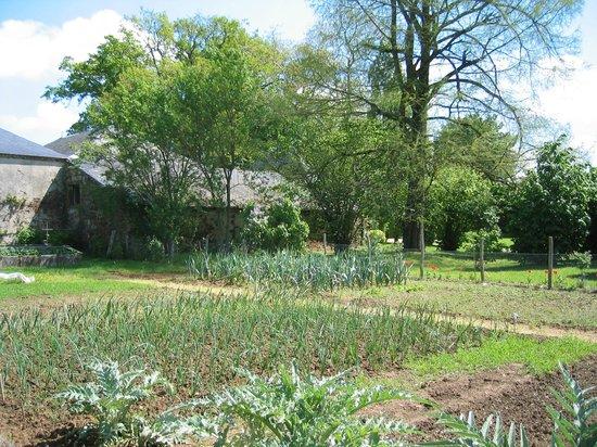 Saint-Denis-la-Chevasse, Francia: le potager et ses richesses