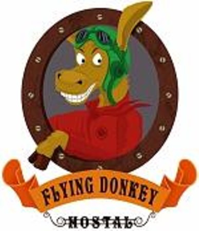 logo flying donkey