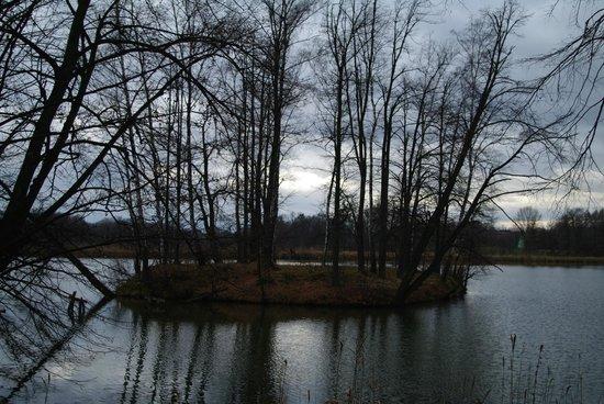 Dwor Debowiec Hotel: Jezioro przy Dworze