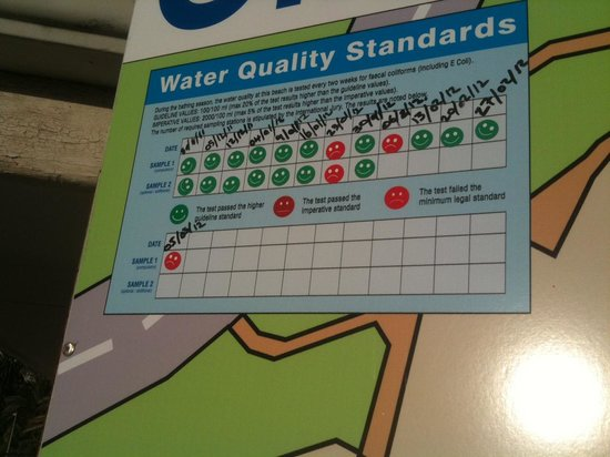 Clifton Beaches: Water quality