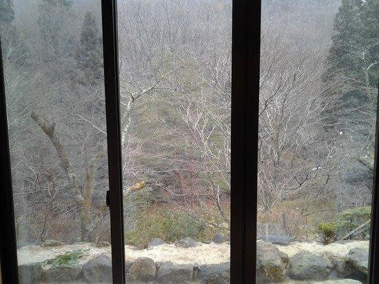 Yasumiishi Onsen Otaya: 部屋から見た庭