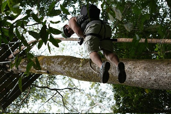 Osa Canopy Tour: Repelling down