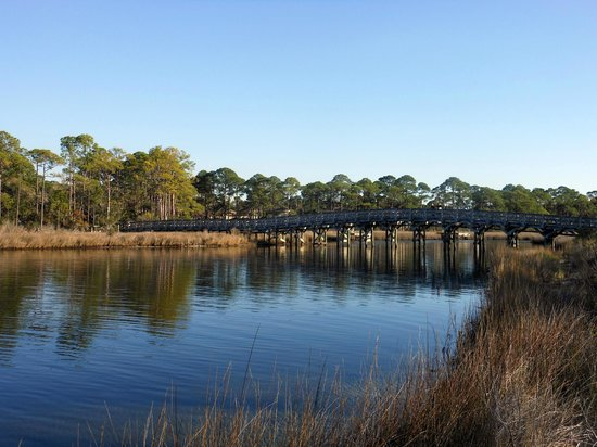 Sandestin Golf and Beach Resort: Nature trail area
