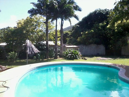 Verdi Mare: Esta es la piscina y parte del jardin