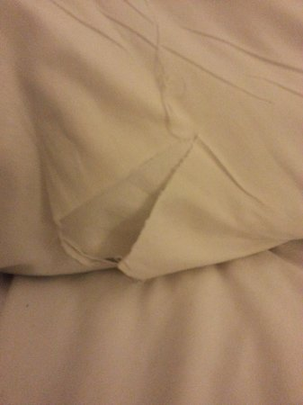 Park MGM Las Vegas: I tear I found in the sheet when I woke.  My hand felt it when I crawled into bed. But I was tir