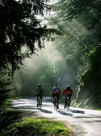 Camping Rioclar : 100 kms of hike and mountain bike riding tracks from the Camping.