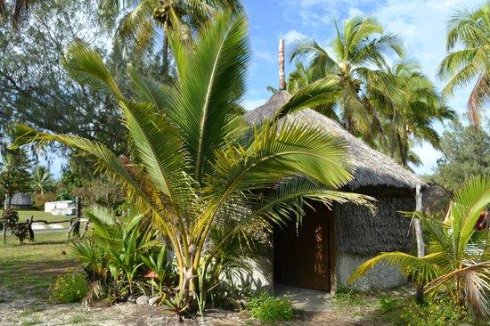 Оувеа, Новая Каледония: La case