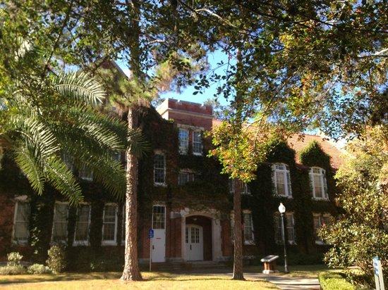 University of Florida : Warrington Courtyard