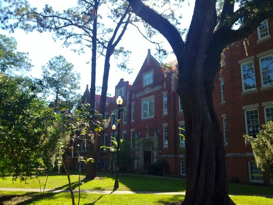 University of Florida : Anderson Hall