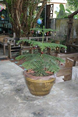 Baan Nattawadee: Courtyard