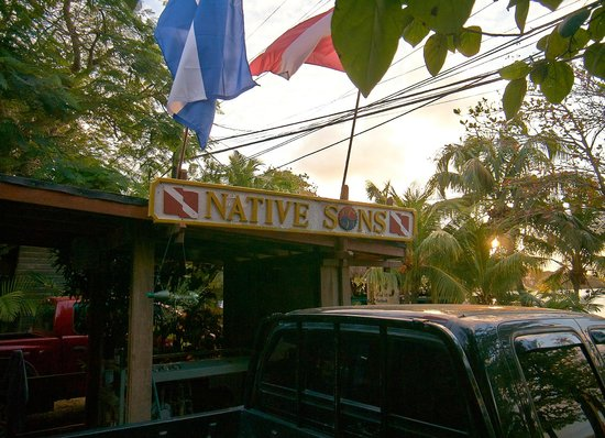 Hotel Chillies: Native Sons dive shop at the front door