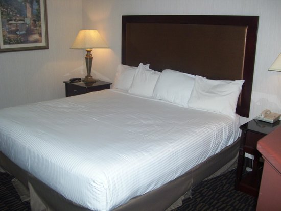 Shilo Inn Suites Hotel - Portland Airport: comfie king bed