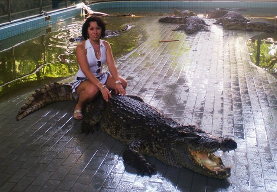 Riding on a crocodile ) - Picture of Million Years Stone ...