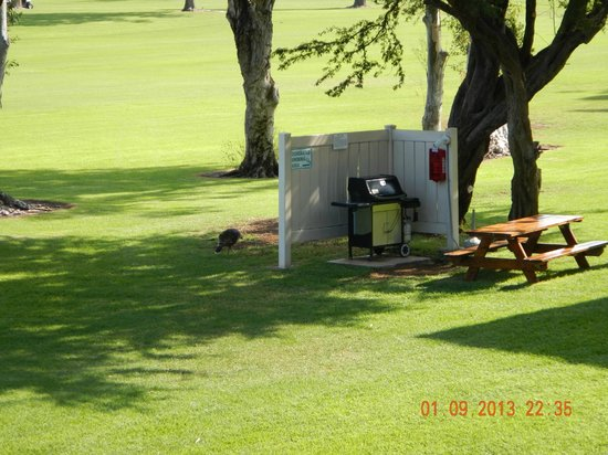 Paniolo Greens Resort: BBQ- designated smoking area