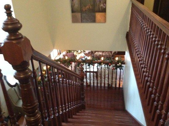 Au Petit Marigot : Escada