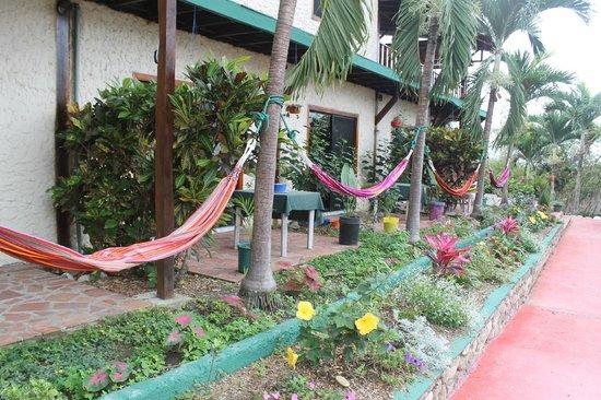 Xanadu Hotel: maybe just some hammock time...