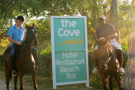 The Cove Horse Riding Stables