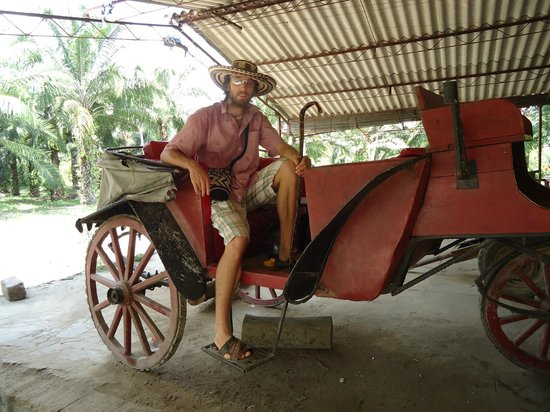 The Gypsy Residence Tours: el coche en el cual Garcia Marquez se transporto la ultima vez que visito a Aracataca