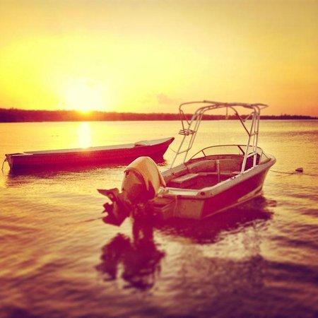Richie's on the Beach: Sunrise boat trip