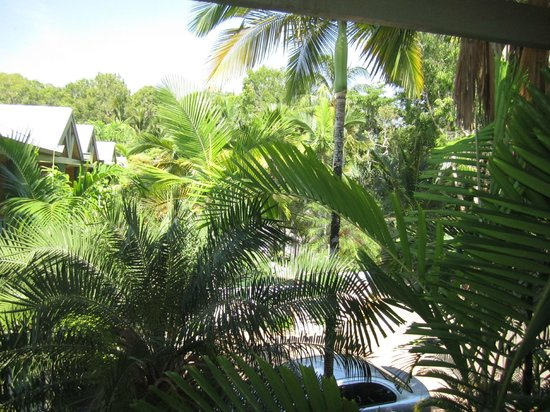 Tropical Nites: View from the bedroom balcony