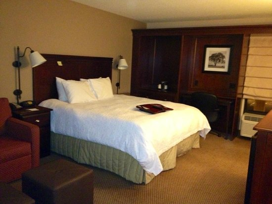 Hampton Inn Salisbury : King Room