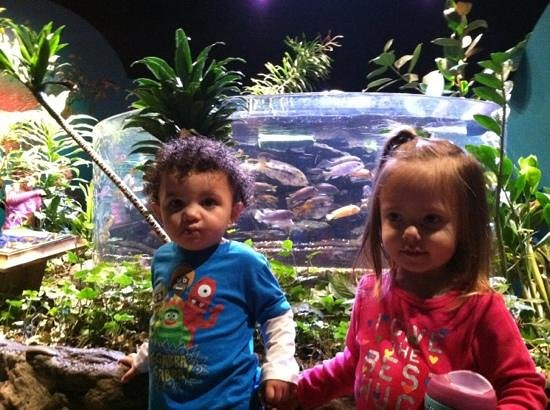 Newport Aquarium: reese and jarrett