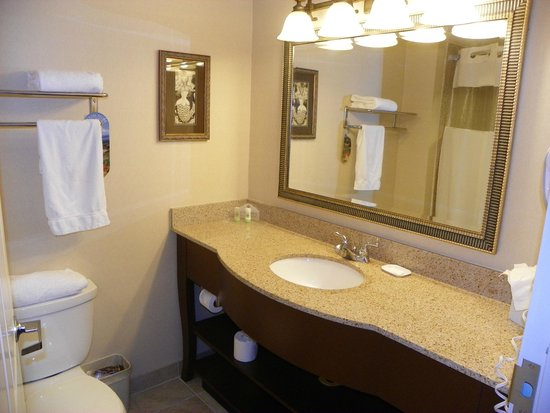 Holiday Inn Express & Suites Bradenton East-Lakewood Ranch: Nice sink area in Bathroom