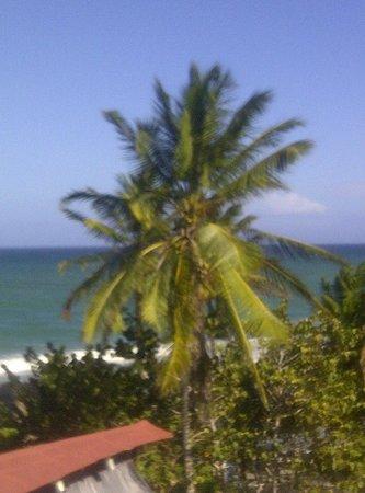 Isla Caribe Beach Hotel: vista de la hab