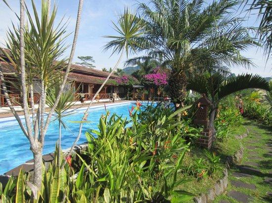 Villa Sumbing Indah : Vue sur la villa du chemin qui borde la piscine