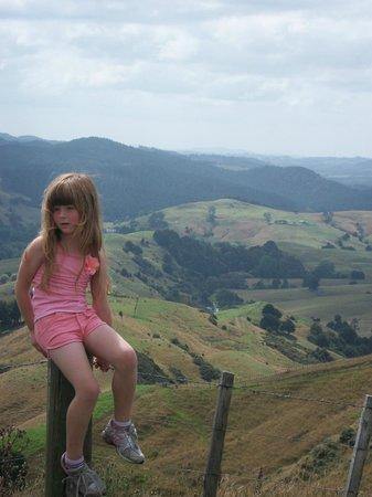 A Kiwi Farmstay: Amazing Views!