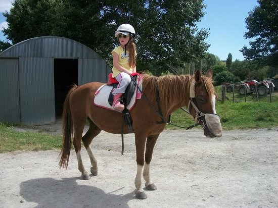 A Kiwi Farmstay: Horseriding....just down the road!