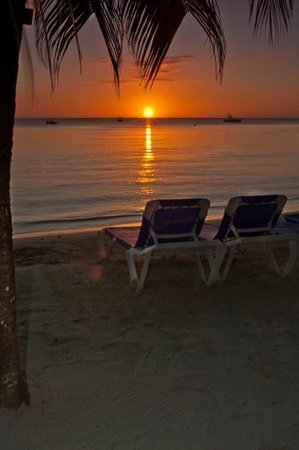 Sandals Negril Beach Resort & Spa : beautiful sunsets