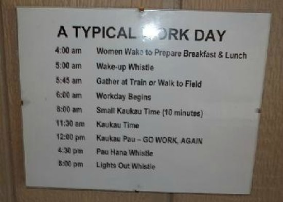 Hawaii Plantation Village The Work Day Schedule