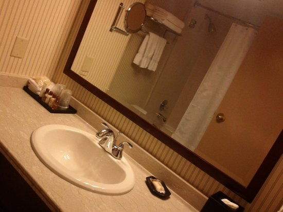 Sheraton Gateway Hotel Toronto Airport: Bathroom