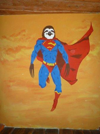 El Salto Ecolodge: sloth!
