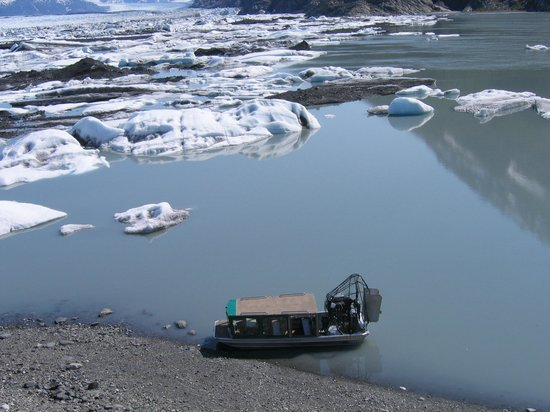 ‪كنيك ريفر لودج: Airboat tour to the face of the Knik Glacier nearby‬