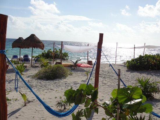 Almaplena Eco Resort & Beach Club: Almaplena