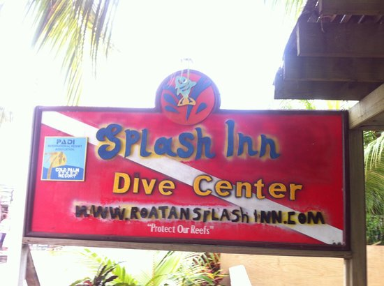 Splash Inn Dive Resort: Dive inn