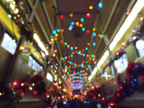 Delaware River Railroad Excursions: Decorated inside the train