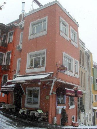 Vaha Cafe and Restaurant