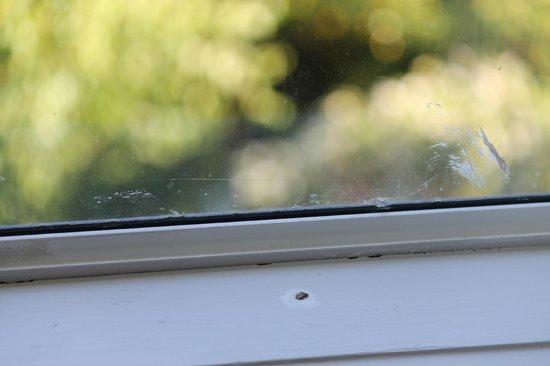 Mercure Resort Queenstown: dirty window sills and windows