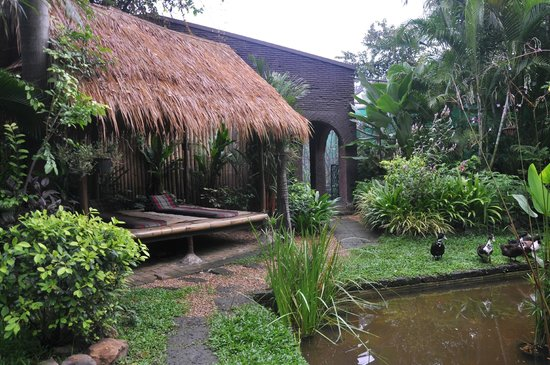 Bungalows Guesthouse: espace detente