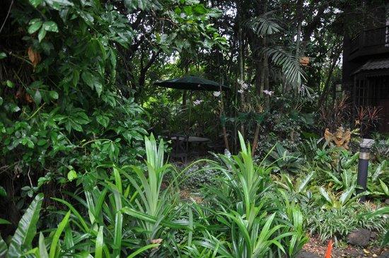 Bungalows Guesthouse: jardin