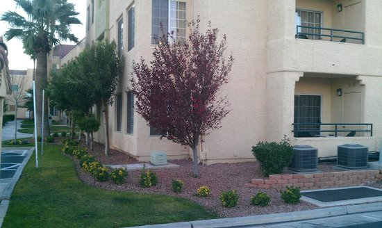 Holiday Inn Club Vacations Las Vegas - Desert Club Resort: Corner of Building