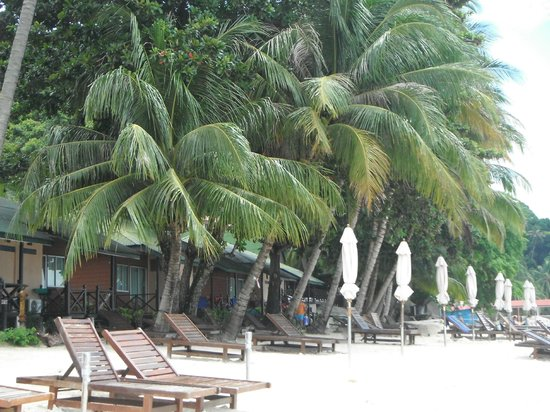 Perhentian Tuna Bay Island Resort : Beach accommodation