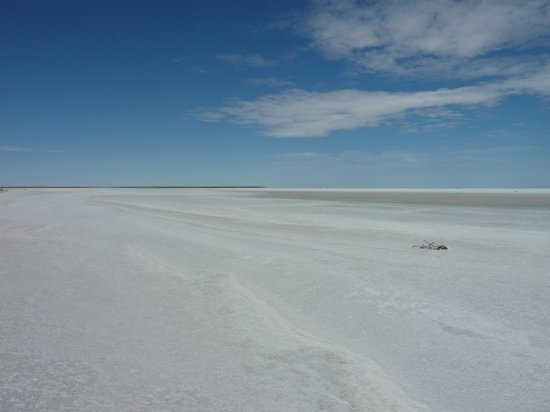 Arid Areas Day Tours: Lake Eyre, SA
