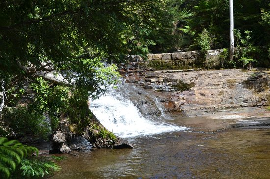 Liffey Falls : Second Falls