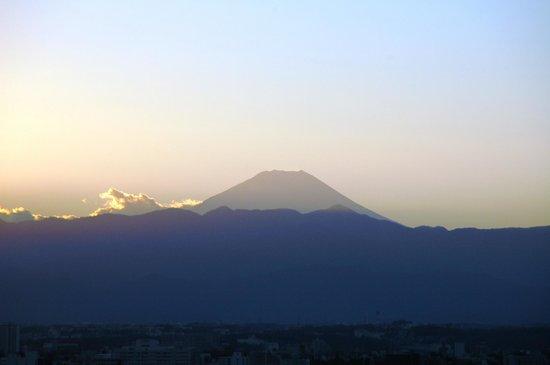 เดอะ เวสติน โตเกียว: Fuji