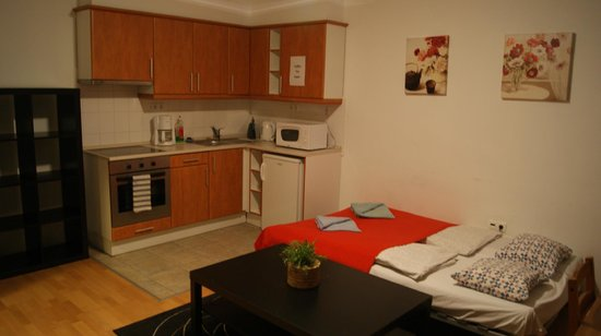 Locust Tree Apartments: Coin cuisine et lit-divan