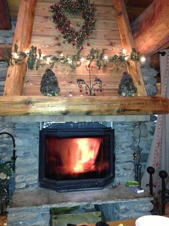 Chalet les Champs du Pont : a very welcome cosy fire!
